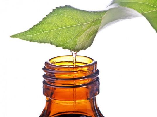 Activos naturales para línea capilar y derma